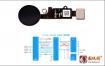 iphone7/7P/8/8P home键电路原理图